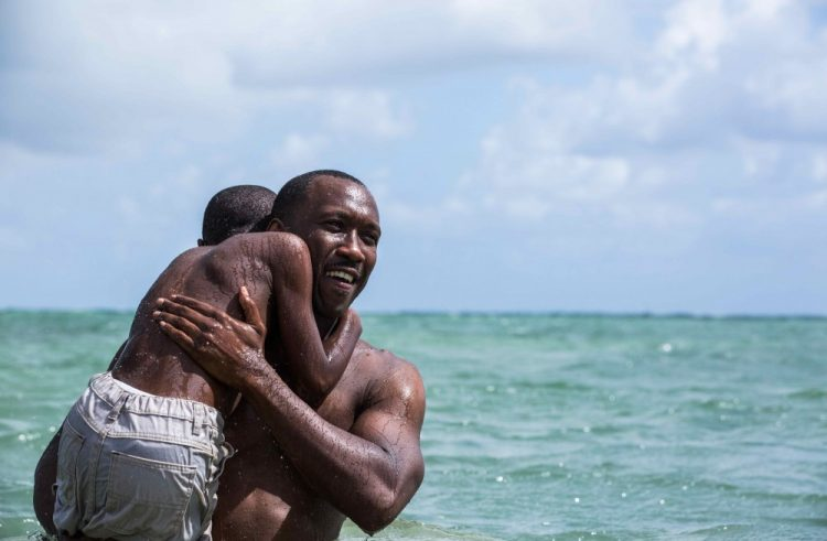 Moonlight & American Honey Lead Spirit Award Nominations