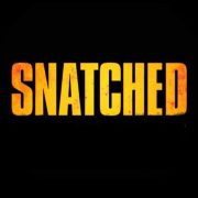Snatched (2017) Review