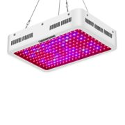 Best LED Grow Lights under $100: the Phlizon 600W Top LED Grow Light