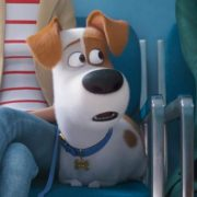 THE SECRET LIFE OF PETS 2 IN UK CINEMAS 24 MAY 2019