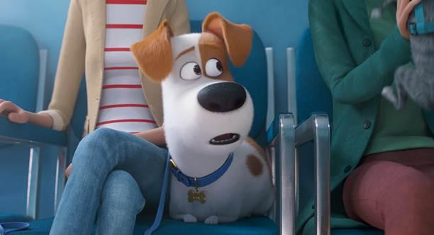 THE SECRET LIFE OF PETS 2IN UK CINEMAS 24 MAY 2019